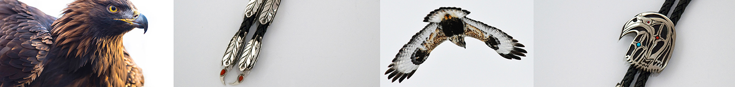 Eagle and Hawk stories banner